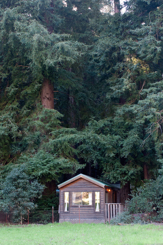 Forest cabins big sur california fernwood campground for Big sur cabin