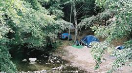 C&ing & Fernwood Campground u0026 Resort :: Big Sur California
