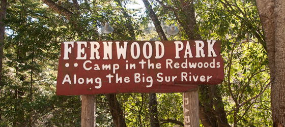 Camp in the redwoods along the Big Sur River