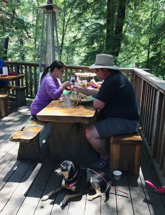 Dog Friendly Restaurant -dogs welcome on the deck