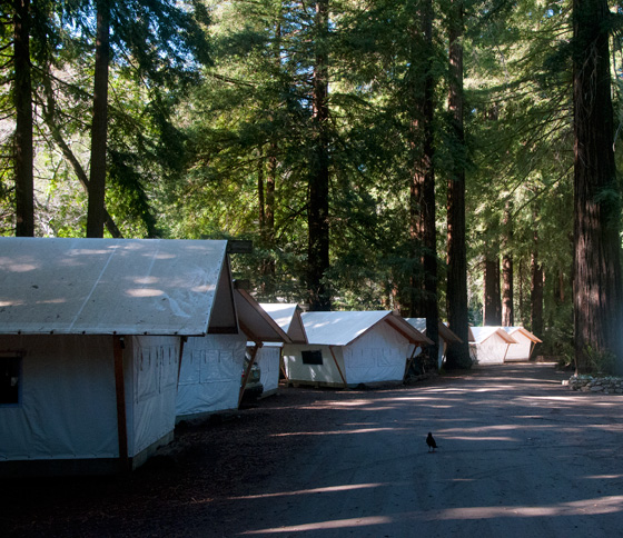 Tent Cabins Camping in Big Sur